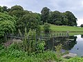 Cuckney - mill pond sluice railings - geograph.org.uk - 614967.jpg