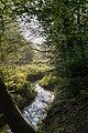 Dülmen, Naturschutzgebiet -Franzosenbach- -- 2014 -- 0181.jpg