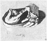 Dürer, Albrecht - Die Hände des zwölfjährigen Christus - 1506.jpg