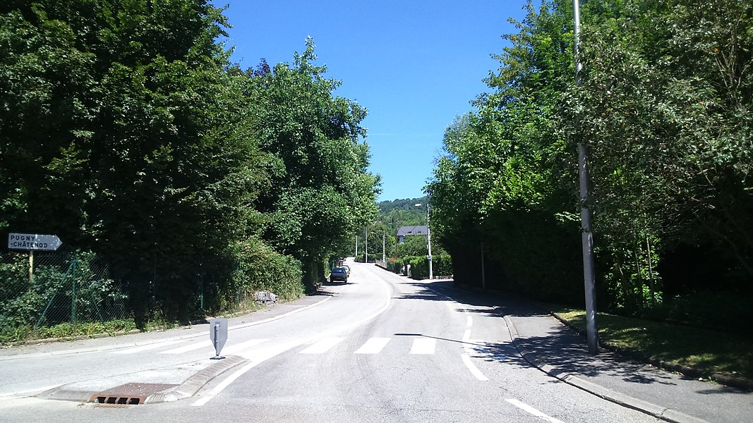 La route de Pugny (D49) sur Aix-les-Bains.