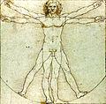 Da Vinci Vitruve Luc Viatour2.jpg