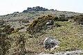 Dartmoor, Pew Tor - geograph.org.uk - 794753.jpg