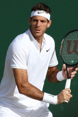 Juan Martín del Potro - Del Potro at the 2016 Wimbledon Championships