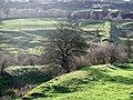 Denholme Beck - geograph.org.uk - 358866.jpg