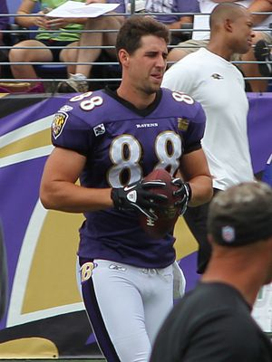 Dennis Pitta - Pitta with the Baltimore Ravens in 2011