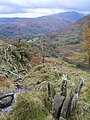 Descending High Pike - geograph.org.uk - 1009132.jpg