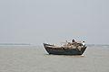 Desi Goods Vessel - River Ichamati - Hasnabad - North 24 Parganas 2015-01-13 4467.JPG