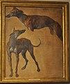 Desportes Study of greyhounds Musee de la Chasse et de la Nature.jpg