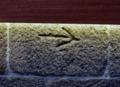 Detalles desde la torre de Vilanova dos Infantes 06.png