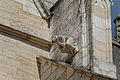 Dijon Cathédrale Saint-Bénigne 27.jpg