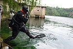 Dive right in (9042799936).jpg
