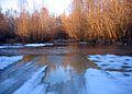 Dobrinka river (Volgograd region) 001.jpg