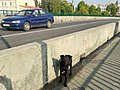 Dog in Pinsk 3.jpg
