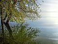 Dojran Lake 128.jpg