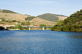 Douro valley (3913528196) (2).jpg