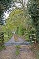 Drive to Fernhill, Stoney Cross - geograph.org.uk - 782415.jpg