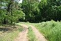 Droga przy piekiełku - panoramio.jpg