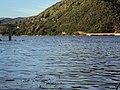 Dunav iz Valjeva - panoramio (16).jpg