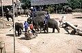 Dunst Myanmar 2005 05.jpg