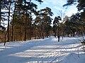EU-EE-Tallinn-Pirita-Kloostrimetsa 008.JPG