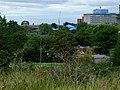 Ealing Hospital - geograph.org.uk - 2586005.jpg
