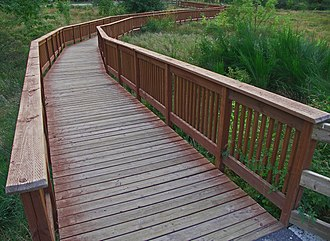 Ebright Creek Park - Boardwalk crossing sensitive wetland area containing native plants, trees and grasses.