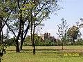 Egerton Castle from a distance.jpg