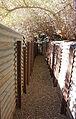 Eilat Botanical garden - trench.jpg