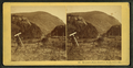 Elephant's Head, Crawford Notch, White Mts, from Robert N. Dennis collection of stereoscopic views 2.png