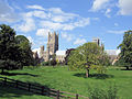 Ely Cathedral From The Deans Meadow. (2787425290).jpg