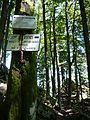 Ende des Sentier des Roches 140707.JPG