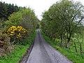 Errigle Road, Gort - geograph.org.uk - 1868935.jpg