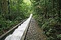 Escada hidráulica de Camorim.jpg