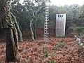 Esclarecidas - Línea en Las Corzas - panoramio.jpg