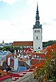 Estonia - Flickr - Jarvis-20.jpg