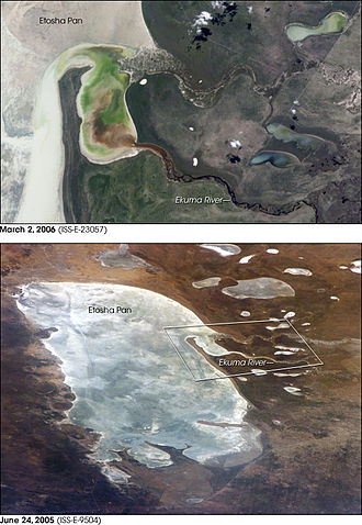 Etosha pan - The first image shows the inflow of the Ekuma River. The surface flow here was sufficient to reach the pan, but insufficient to inundate it beyond the inlet bay. The lower image records the same inlet on the north shore, this time dry.