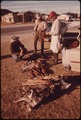 FARMER SELLING HIS FURS TO A BUYER IN LEAKEY, TEXAS, NEAR SAN ANTONIO - NARA - 554934.tif
