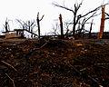 FEMA - 20673 - Photograph by Win Henderson taken on 12-13-2005 in Kentucky.jpg