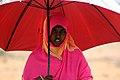 FMSC Staff Trip 2011 - Umbrella (6383977069).jpg