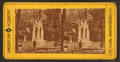 Fairmount Park, Philadelphia, from Robert N. Dennis collection of stereoscopic views.png