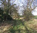 Farm track - geograph.org.uk - 323357.jpg