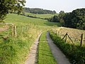 Farm track to Wall - geograph.org.uk - 971641.jpg