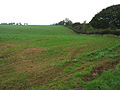 Farmland near Croxton Kerrial, Leicestershire - geograph.org.uk - 67379.jpg