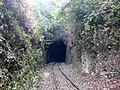 Ferrovia Leopoldina - panoramio.jpg
