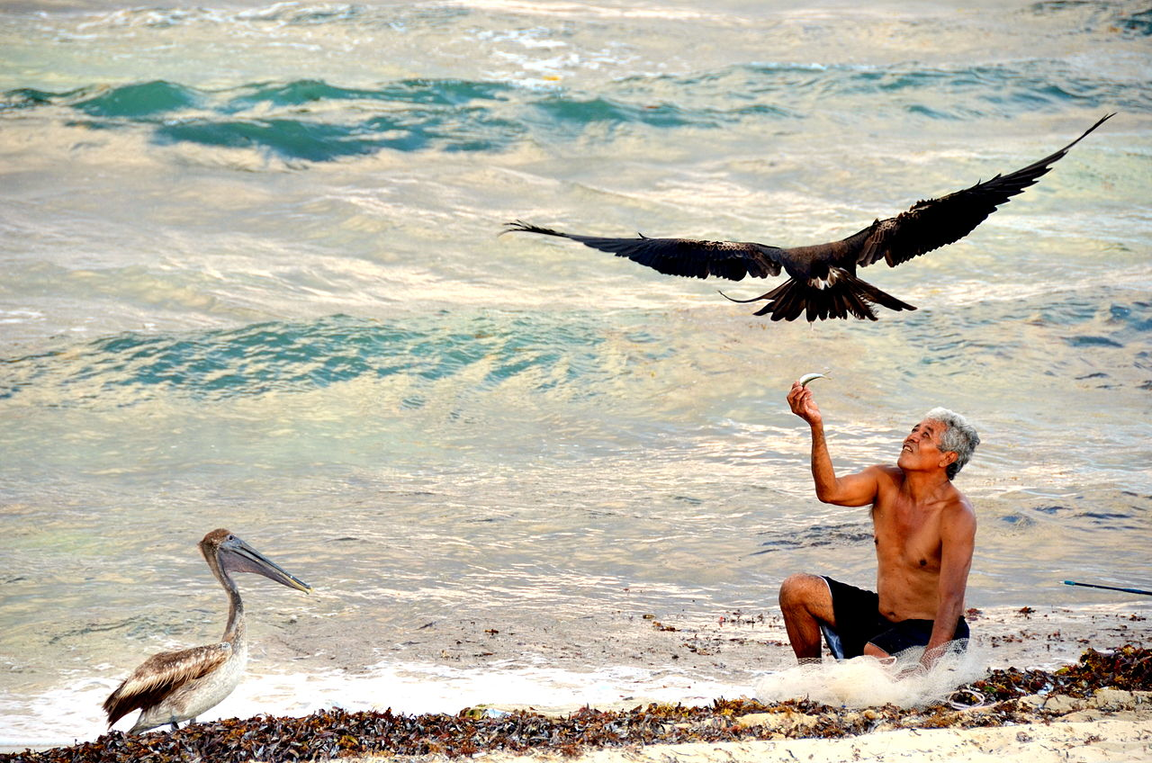 Fisherman feeding a bird