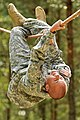 Flickr - DVIDSHUB - US Army Europe Best Warrior Competition 2012 (Image 3 of 10).jpg