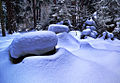 Flickr - Lukjonis - After snowstorm (2 photos).jpg