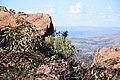 Flinders Ranges SA 5434, Australia - panoramio (39).jpg