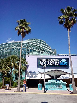 Downtown Tampa - Florida Aquarium