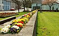 Flower beds, Scarva (2) - geograph.org.uk - 774803.jpg